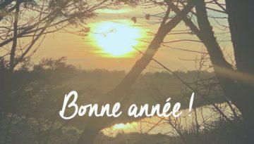 bonneanne